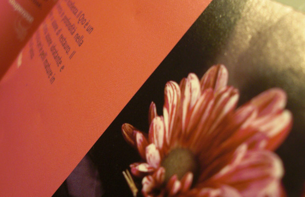 Studio grafico - Imola