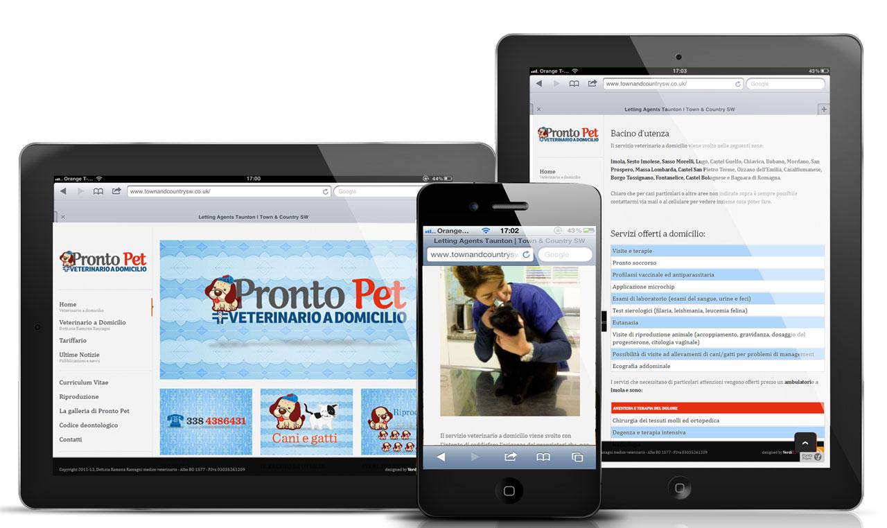 Pronto Pet Corporate identity